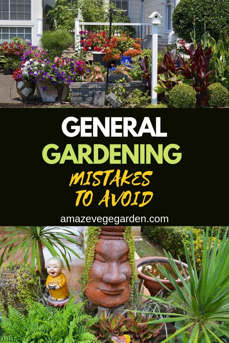 general gardening mistakes to avoid