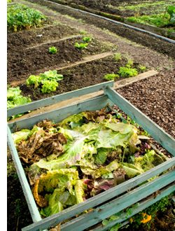 Improve Your Raised Garden Bed Soil With Compost Amaze