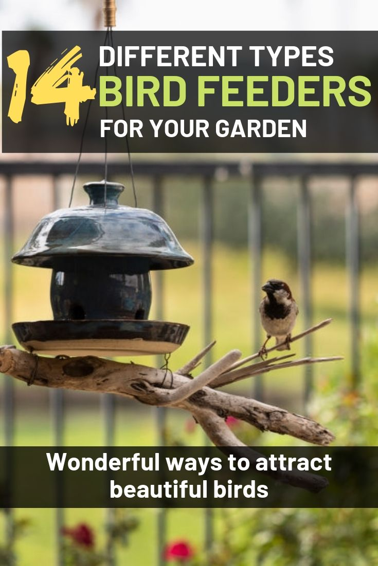 14 different types of bird feeders for your garden