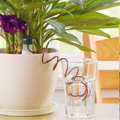 Automatic Plant Watering System Indoor