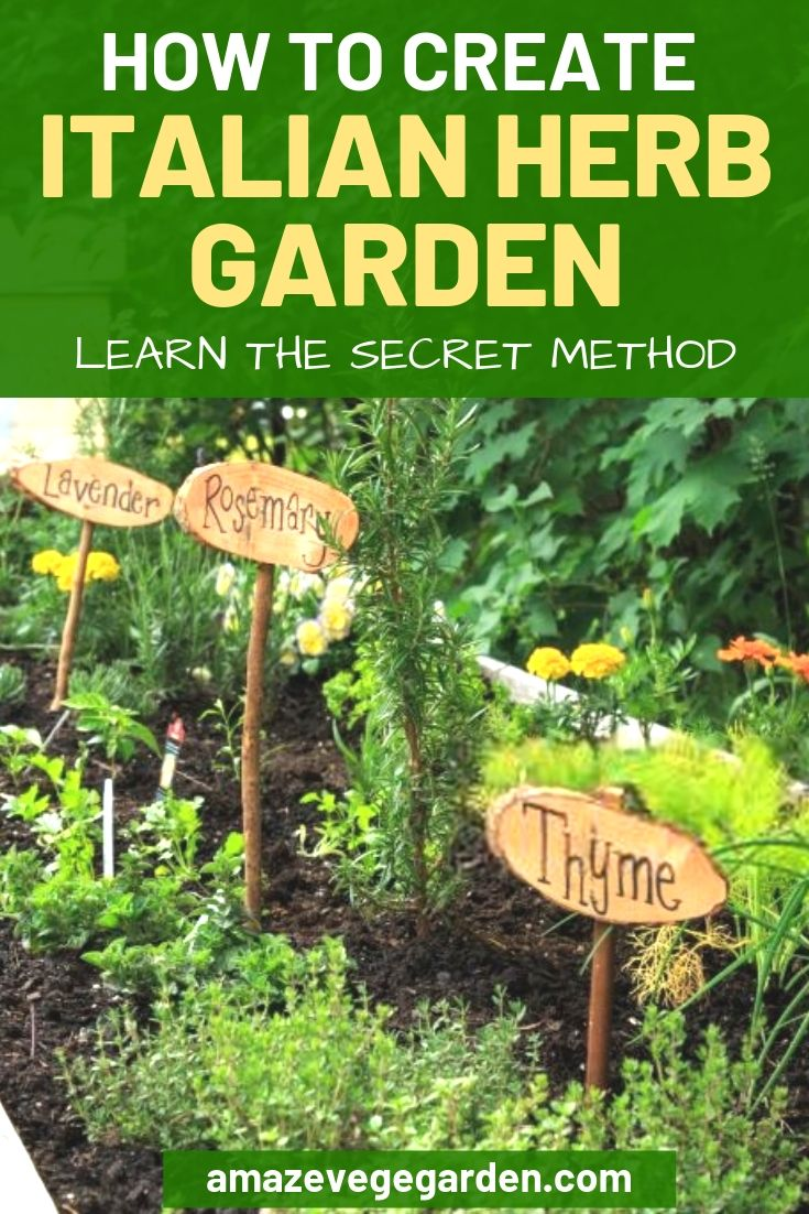 how to create italian herb garden