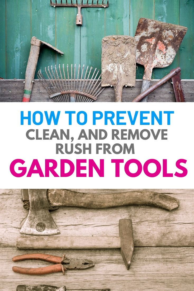 To maintain our garden in good shape, having the necessary garden tools is indispensable. In order to carry out our gardening job smoothly, we need to ensure that our gardening tools always stay in workable condition. Therefore, taking good care of our tools become an important task where we shouldn't neglect. #gardentool #prevent #garden