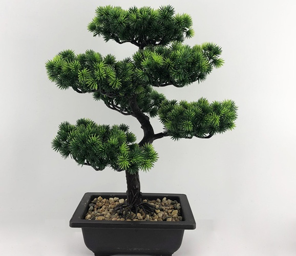 cascade bonsai