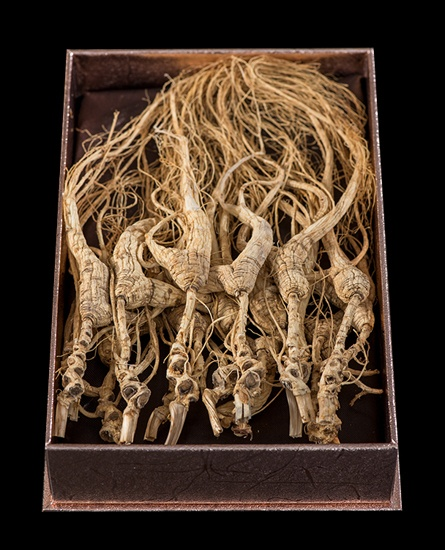 ginseng in box