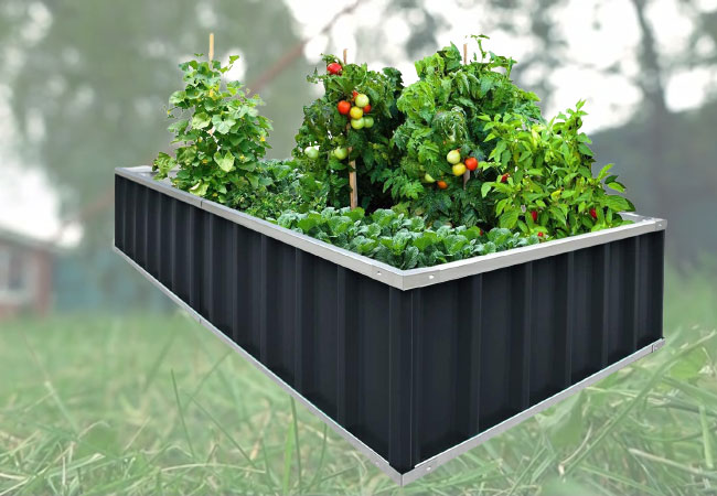 KING BIRD raised garden bed