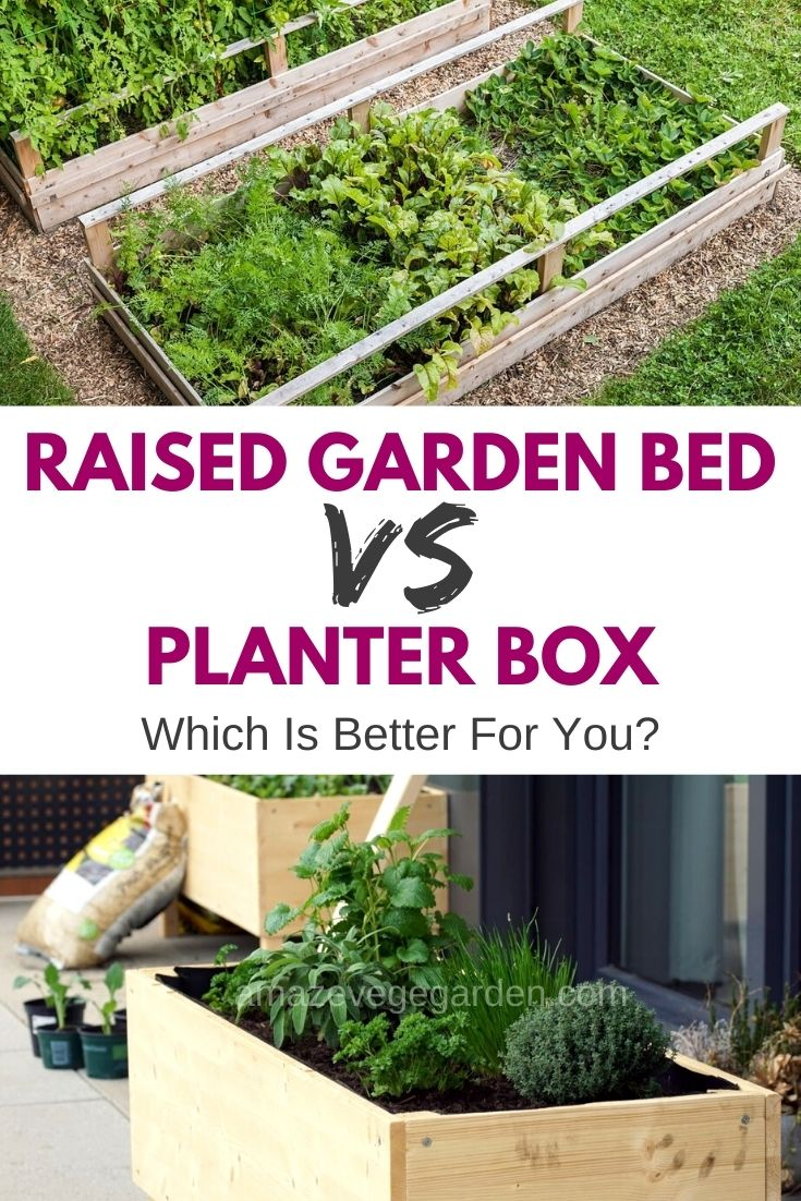 Raised Garden Bed Versus Planter Box: Which Is Better For You?