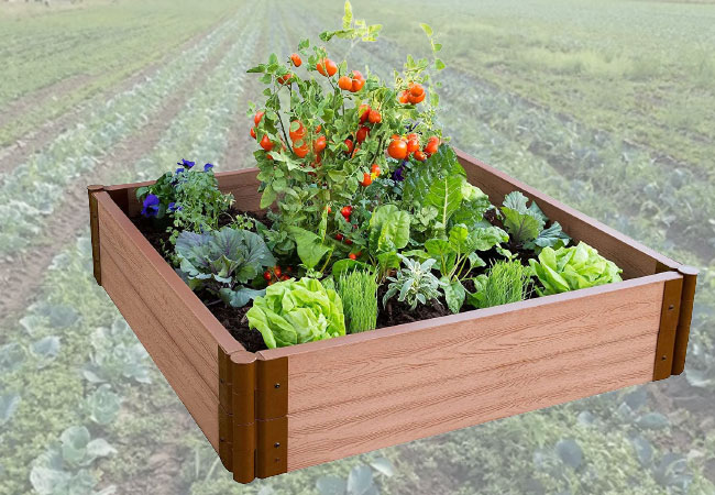Sienna raised garden bed
