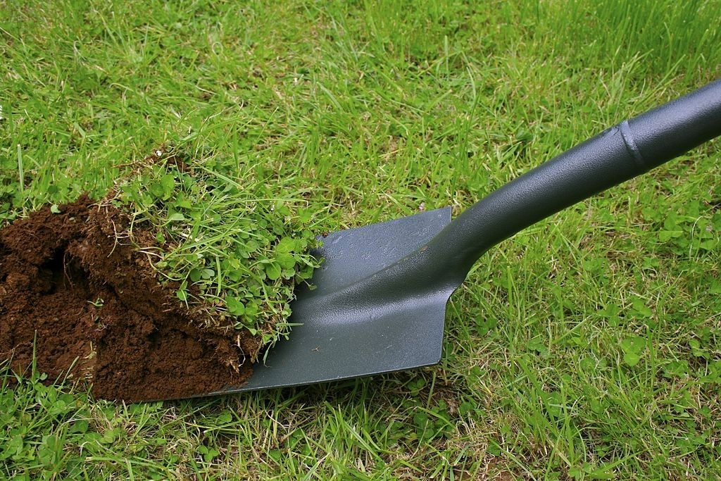 Dig Up Your Lawn
