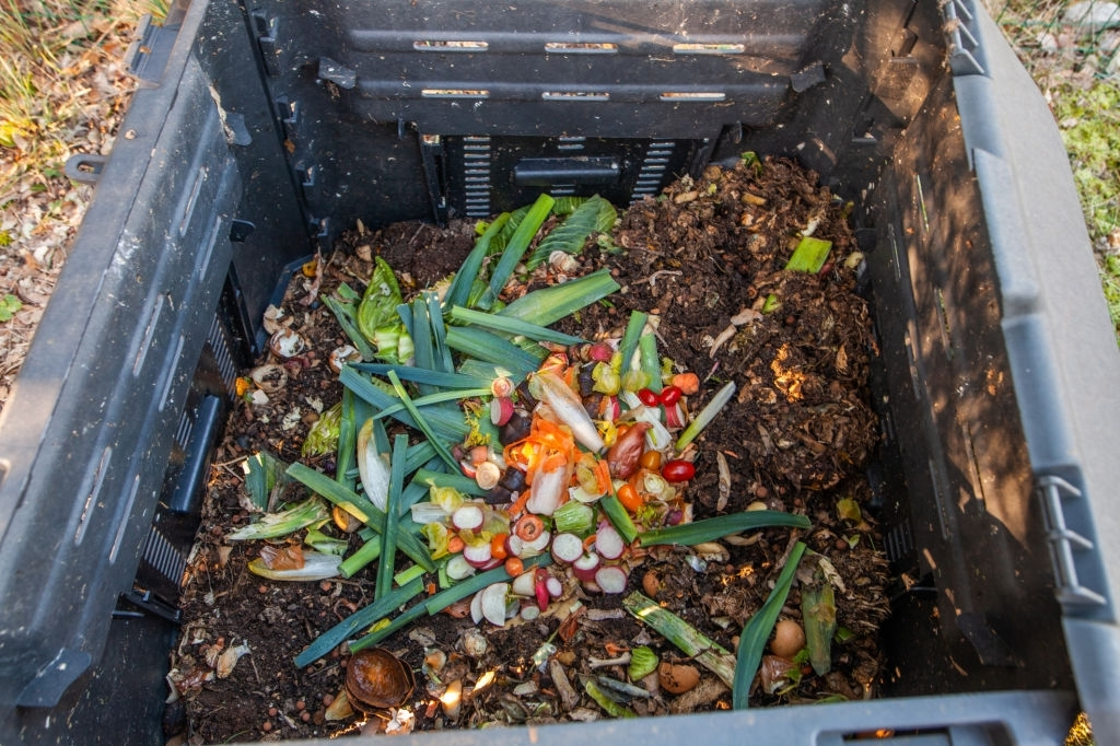 Is It Required To Have A Compost Pile