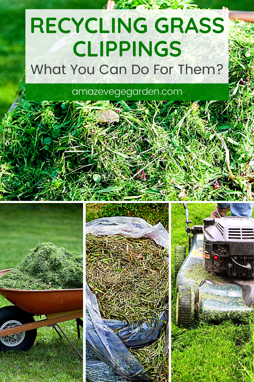 Recycling Grass Clippings What You Can Do For Them