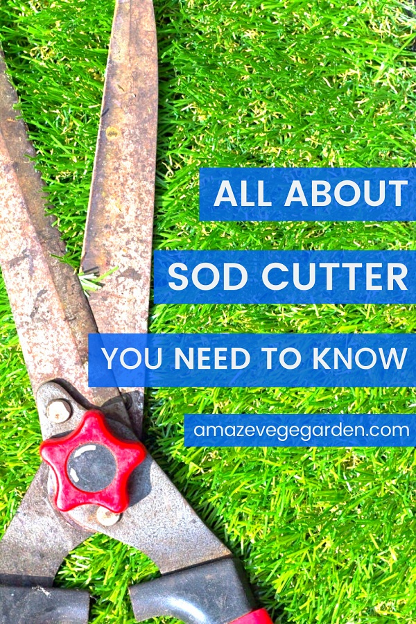 All About Sod Cutter You Need To Know